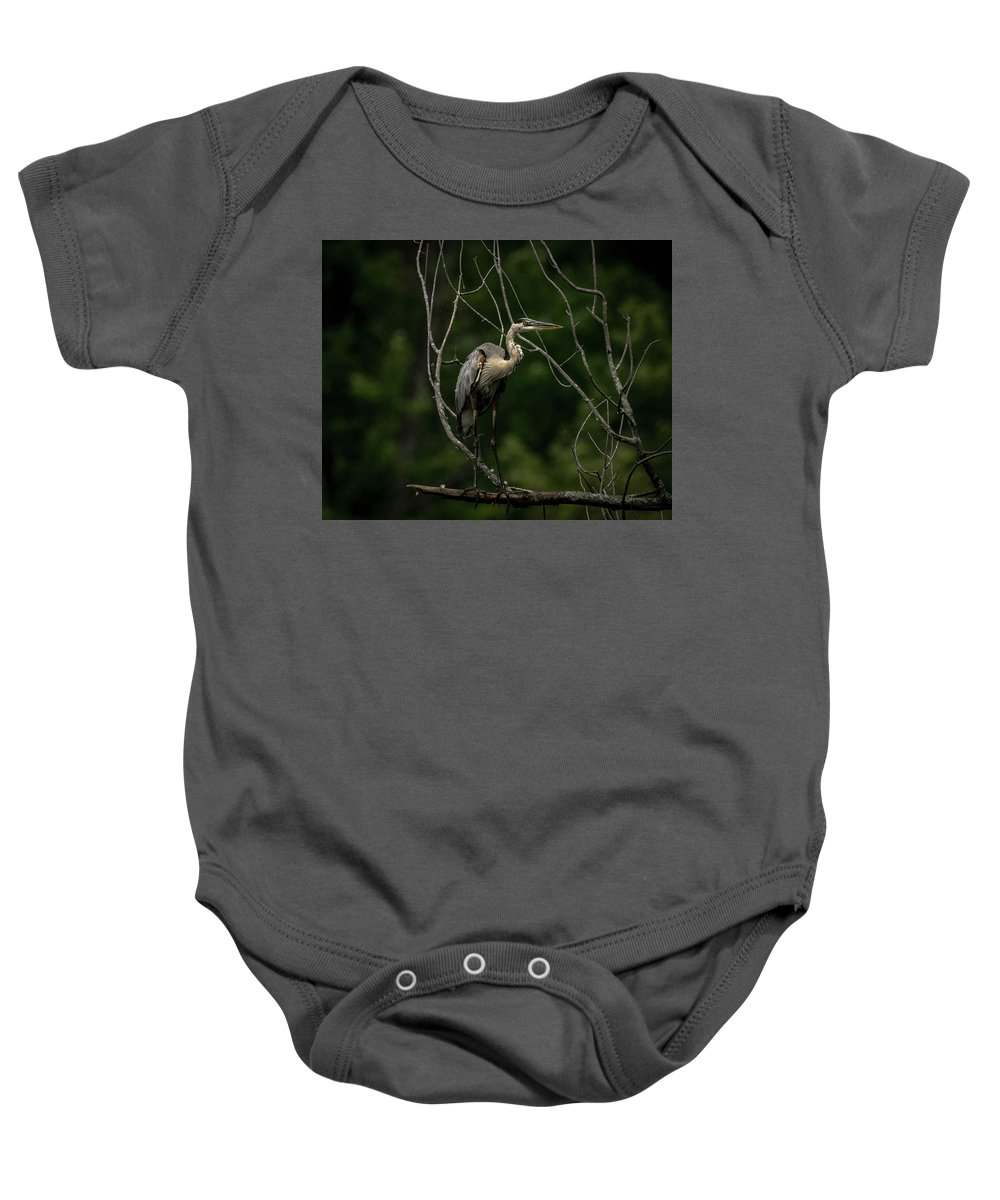 Great Blue Heron Nature Wildlife Baby Onesie featuring the photograph Balanced In Blue by Phillip Beyser
