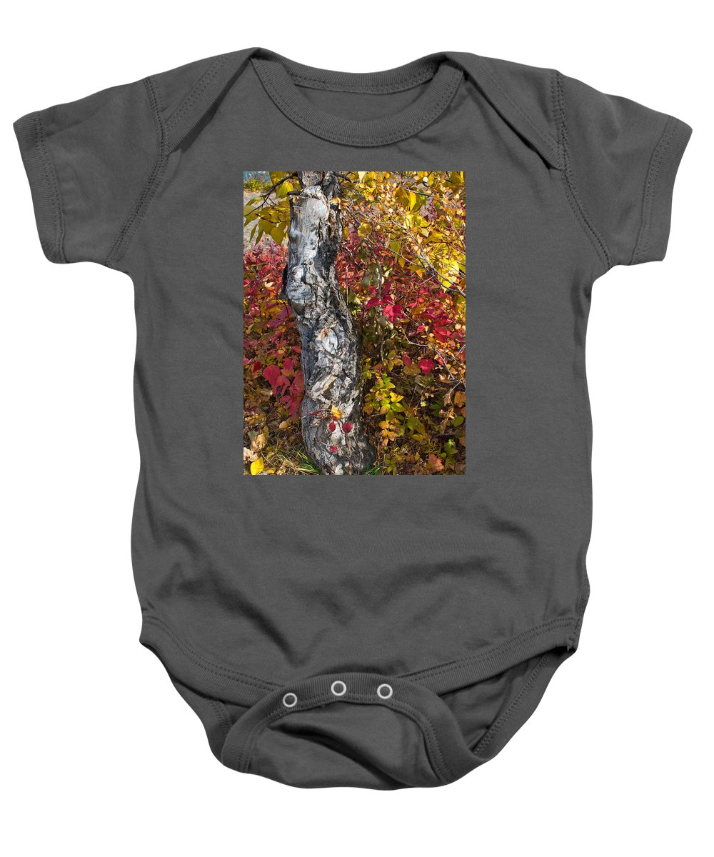 Gnarled Baby Onesie featuring the photograph Gnarled Tree Trunk - Dezadeash Lake - Yukon Territory by Cathy Mahnke