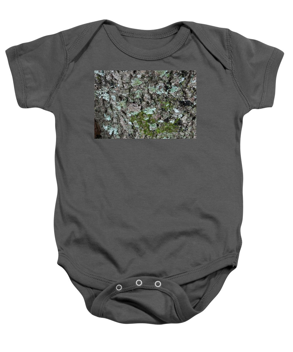 Amphibian Baby Onesie featuring the photograph Gray Treefrog - 8522-2 by Jerry Owens
