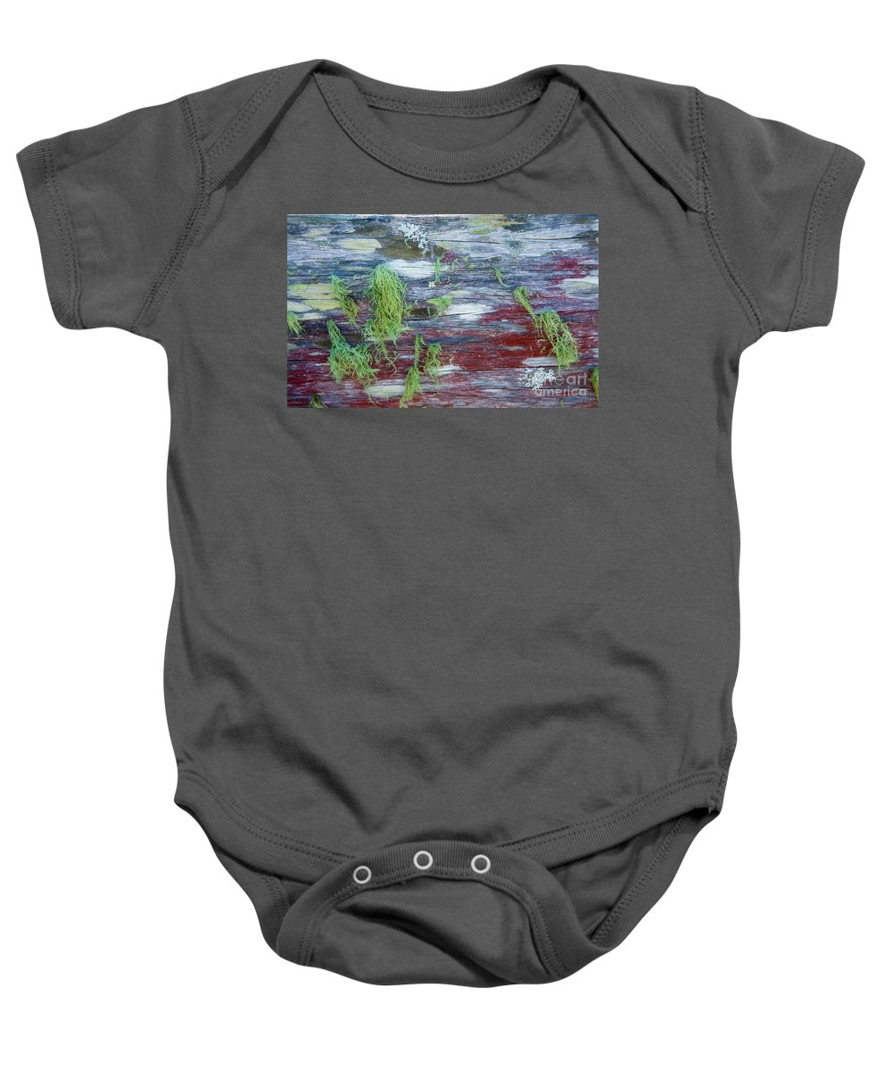 Moss Baby Onesie featuring the photograph Moss On Old Fence by Sheila Smart Fine Art Photography