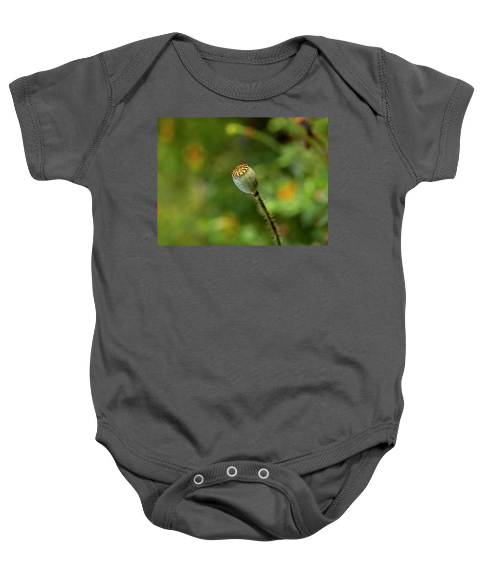 Shirley Poppy Baby Onesie featuring the photograph Shirley Poppy 2018-20 by Thomas Young