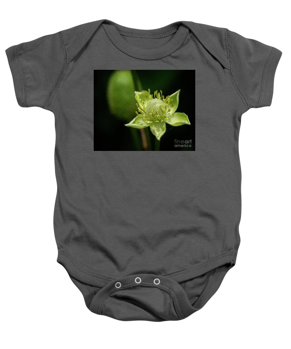 Kg Photography Baby Onesie featuring the photograph Thimbleweed Flower by KG Photography