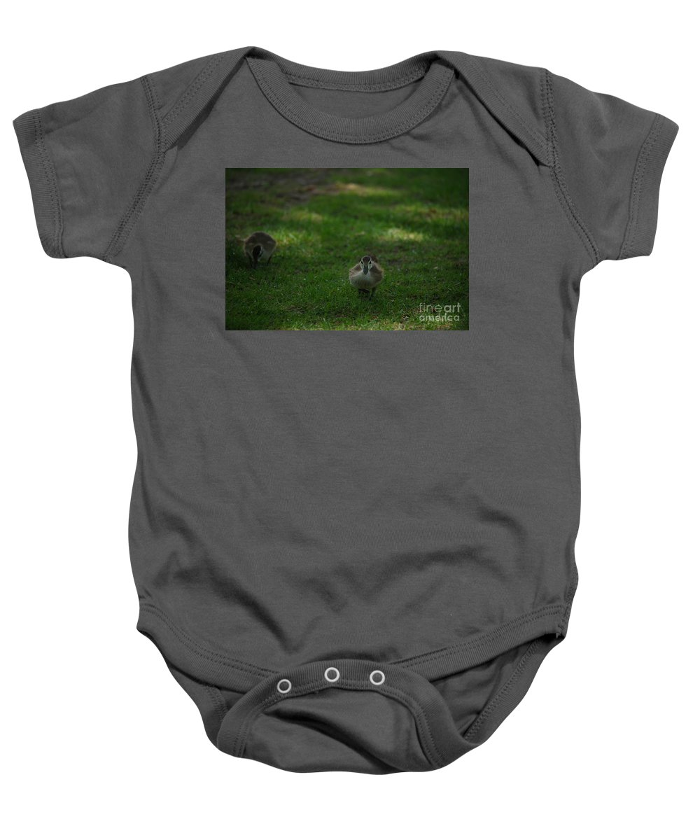 Ducks Baby Onesie featuring the photograph Waddling Ducklings by Jeff Swan