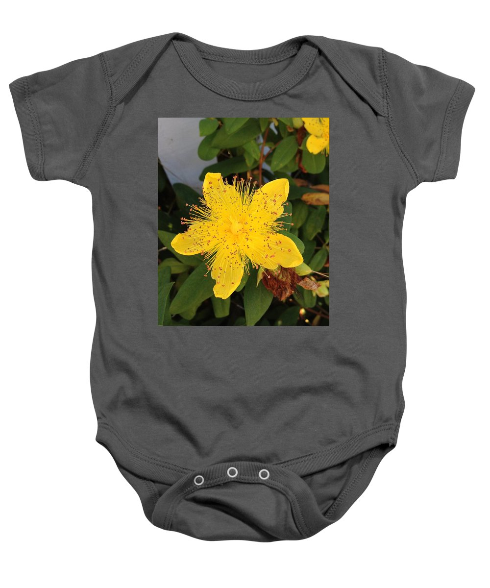 Yellow Baby Onesie featuring the photograph Yellow Coastal Flower by Norman Burnham