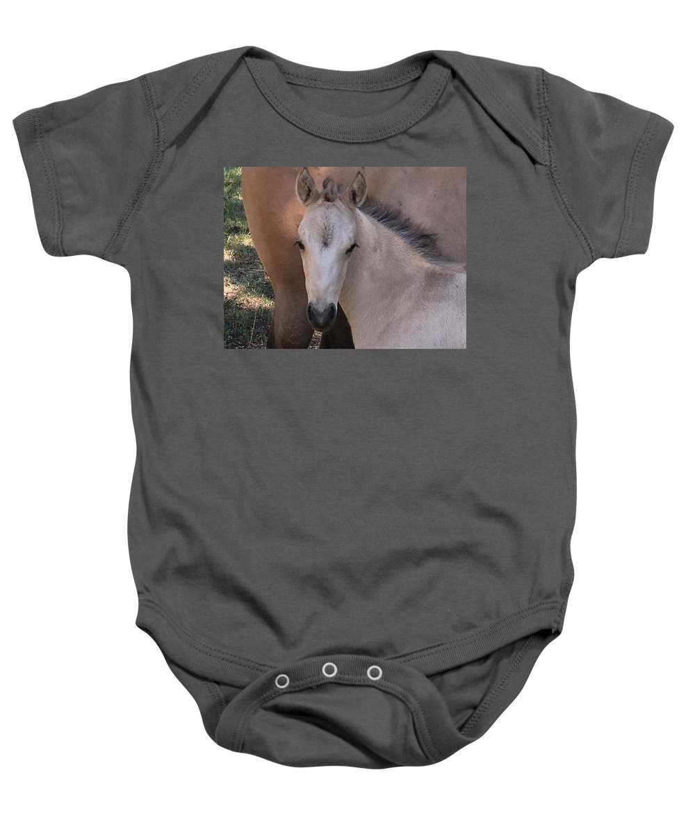 Horse Baby Onesie featuring the photograph Young Colt by Luc Collins