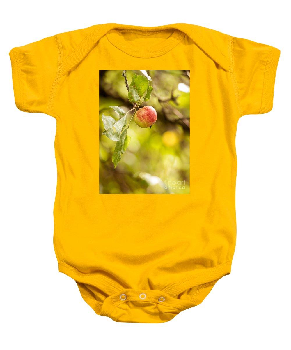 Park Baby Onesie featuring the photograph Autumn Apple by Matt Malloy