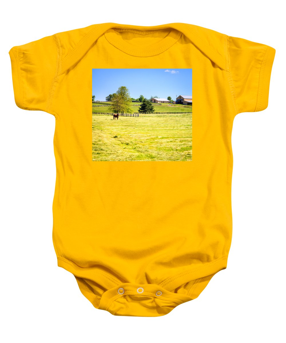 Farm Baby Onesie featuring the photograph Horse Farm by Alexey Stiop