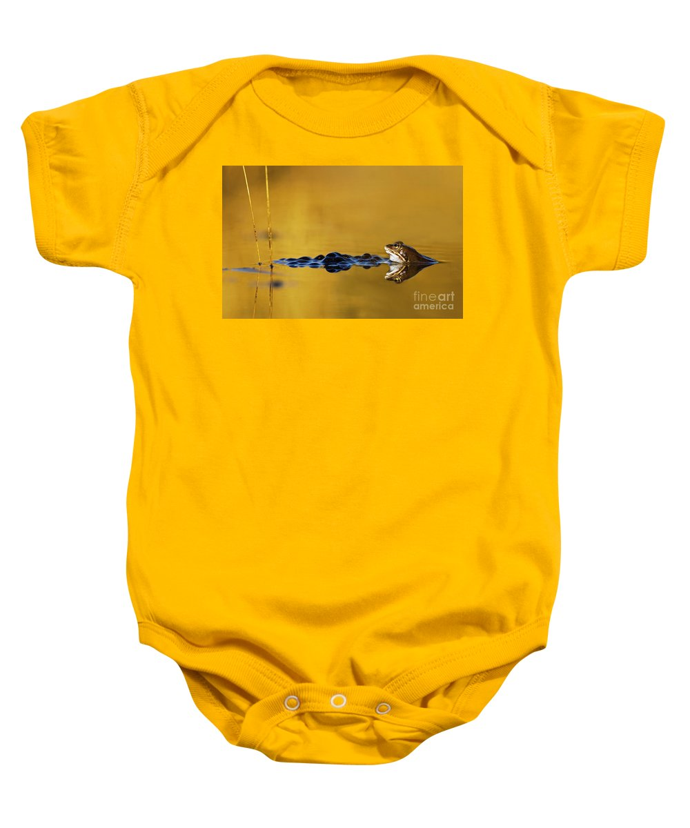 Moor Frog Baby Onesie featuring the photograph 120206p199 by Arterra Picture Library