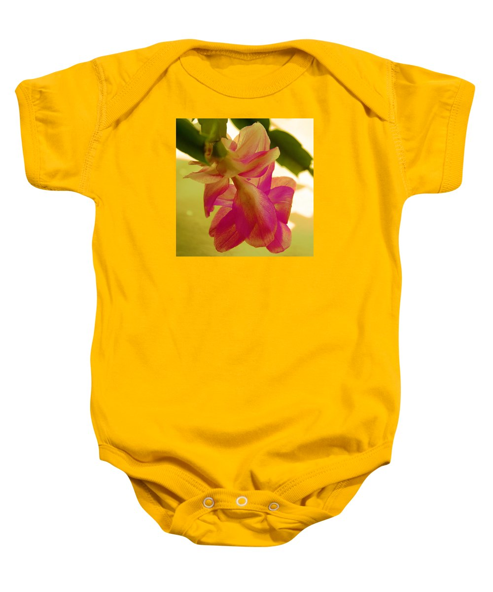 Digital Flower Baby Onesie featuring the photograph Easter Cactus by Christiane Schulze Art And Photography