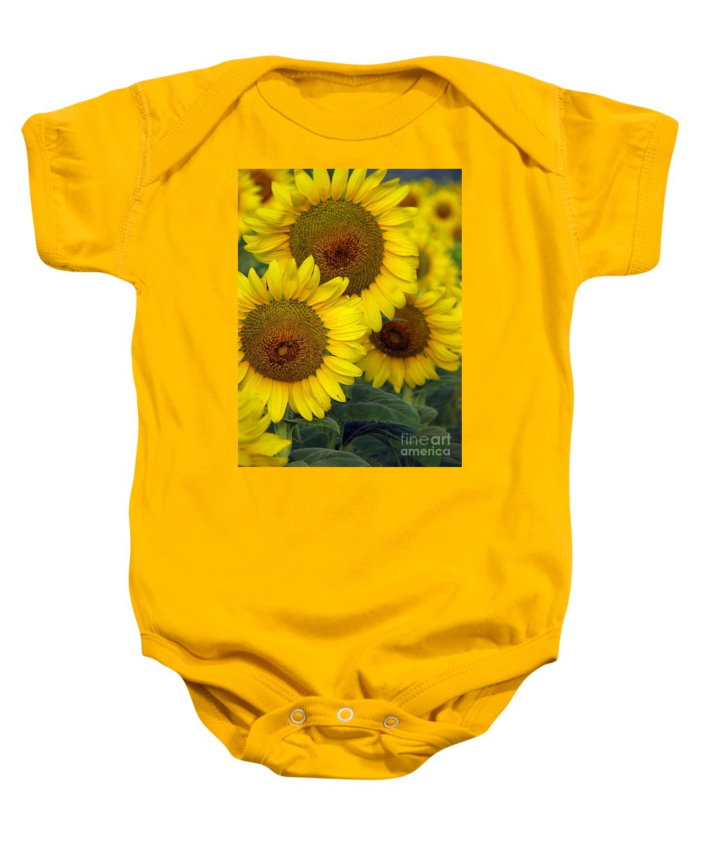 Sunflowers Baby Onesie featuring the photograph Sunflower Series by Amanda Barcon