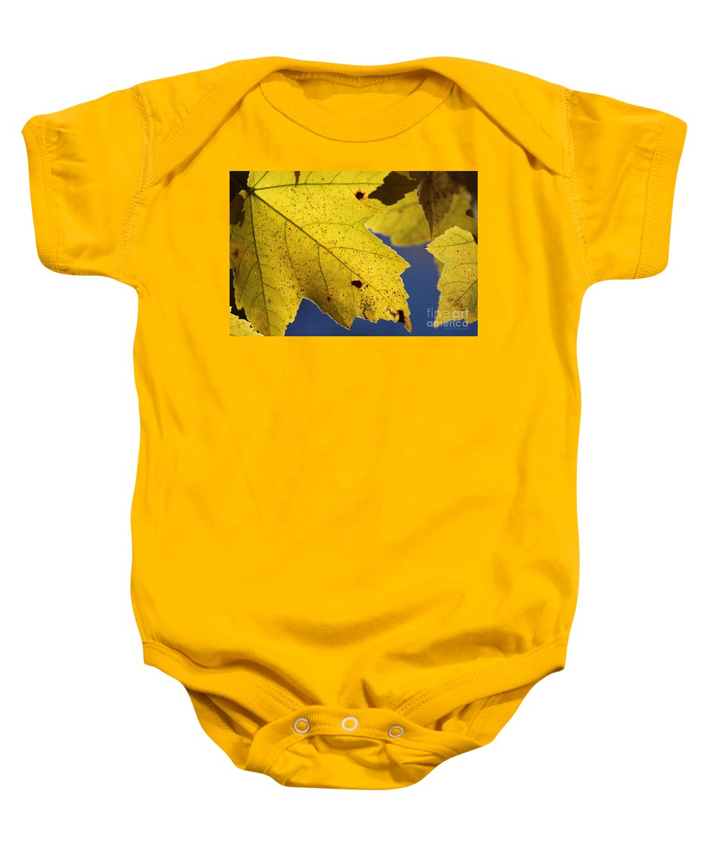 Nature Baby Onesie featuring the photograph Autumn No. 1 by Todd Blanchard