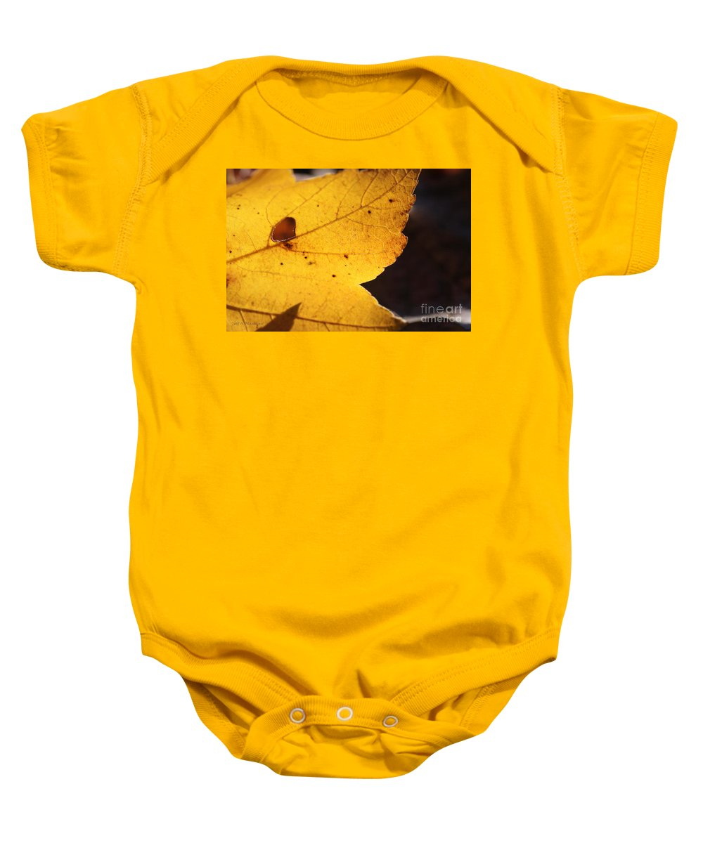 Nature Baby Onesie featuring the photograph Autumn No. 3 by Todd Blanchard