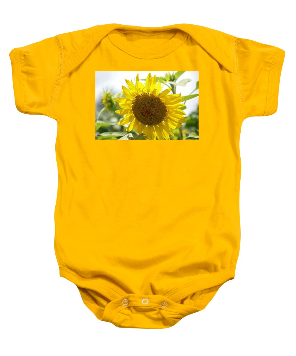 Backlit Sunflower Baby Onesie featuring the photograph Backlit Sunflower by Maria Urso