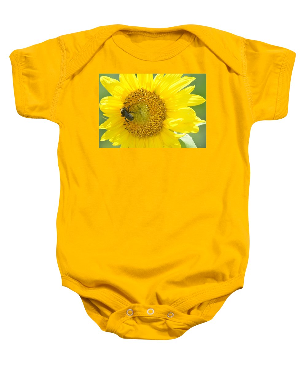 Bright Sunflower 2013 Baby Onesie featuring the photograph Bright Sunflower 2013 by Maria Urso