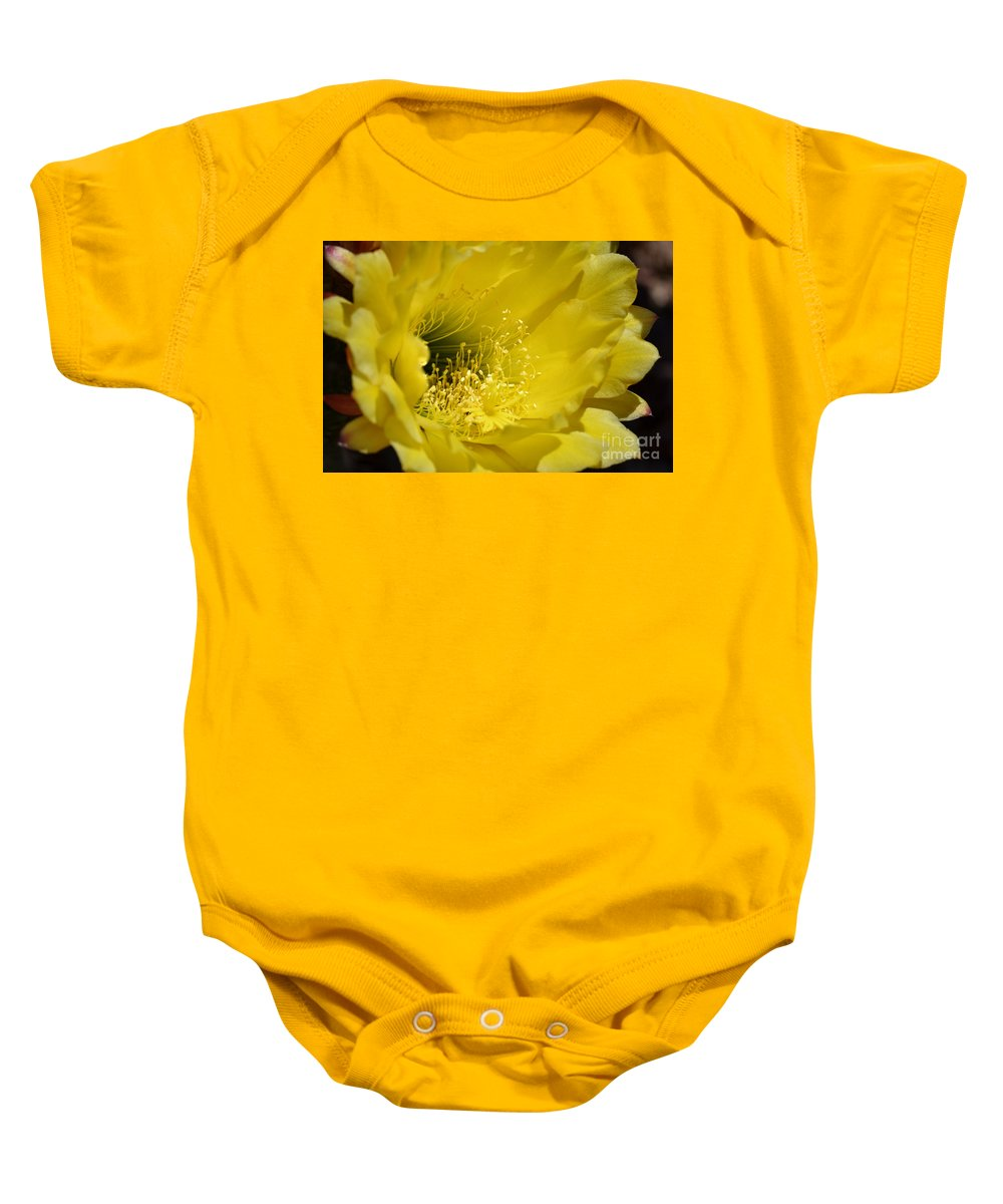 Cactus Flower Baby Onesie featuring the photograph Brilliance by Deb Halloran
