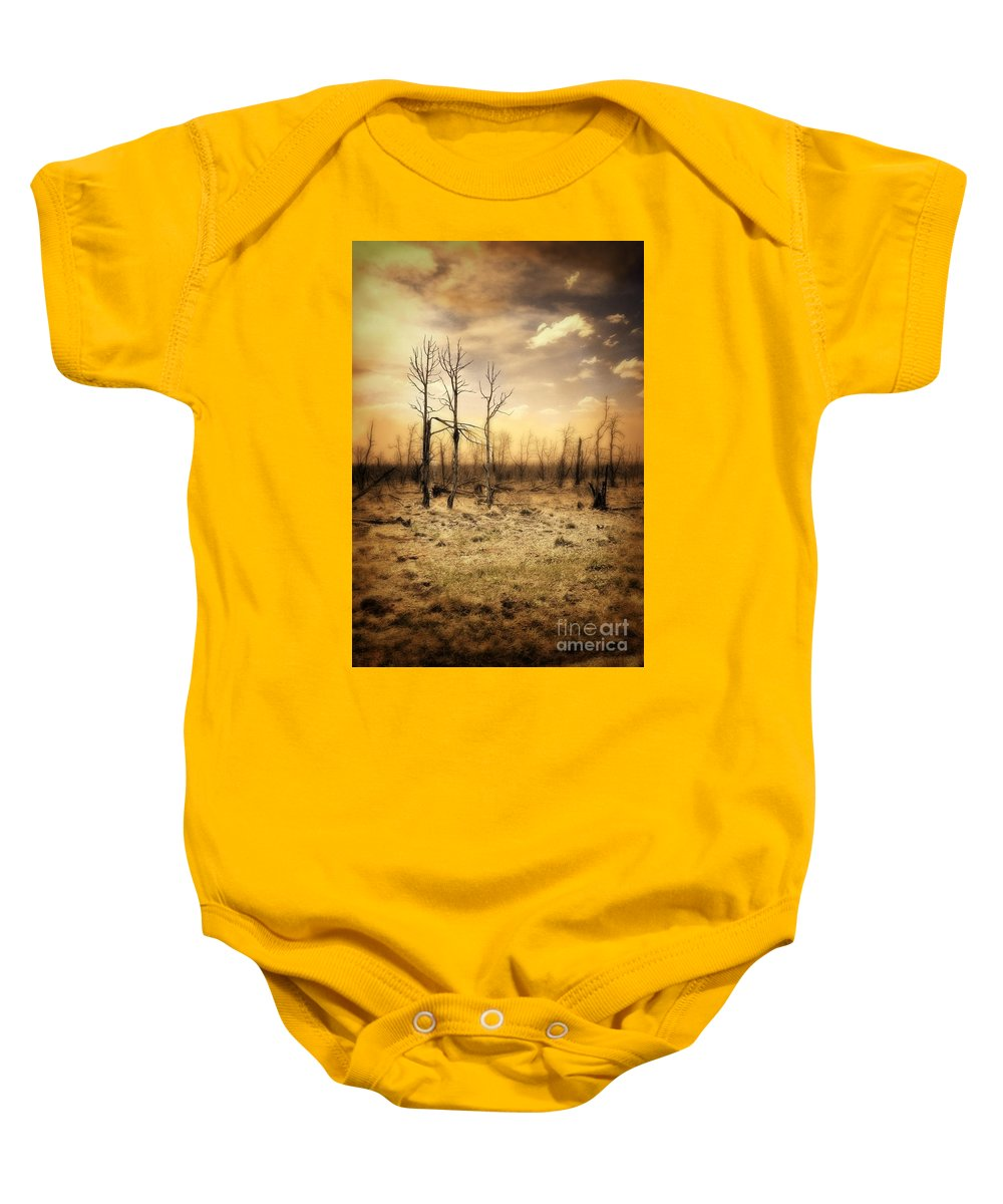 Forest Baby Onesie featuring the photograph Burned Out Forest by Jill Battaglia