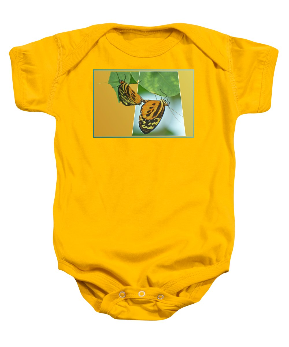 Mating Baby Onesie featuring the photograph Butterflies Mating Out Of Bounds by Thomas Woolworth