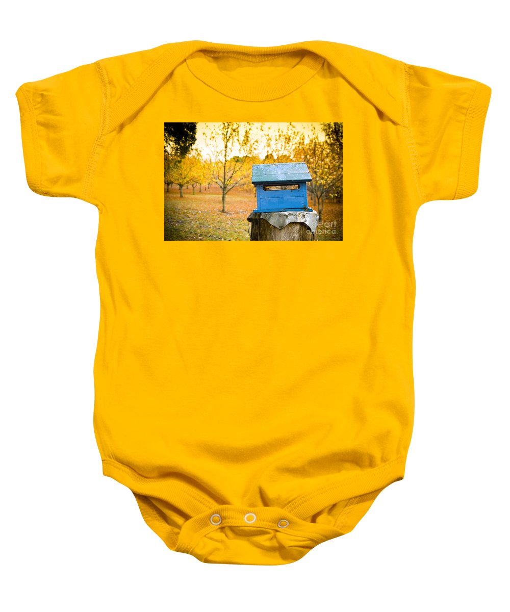 Background Baby Onesie featuring the photograph Country Letterbox by Tim Hester