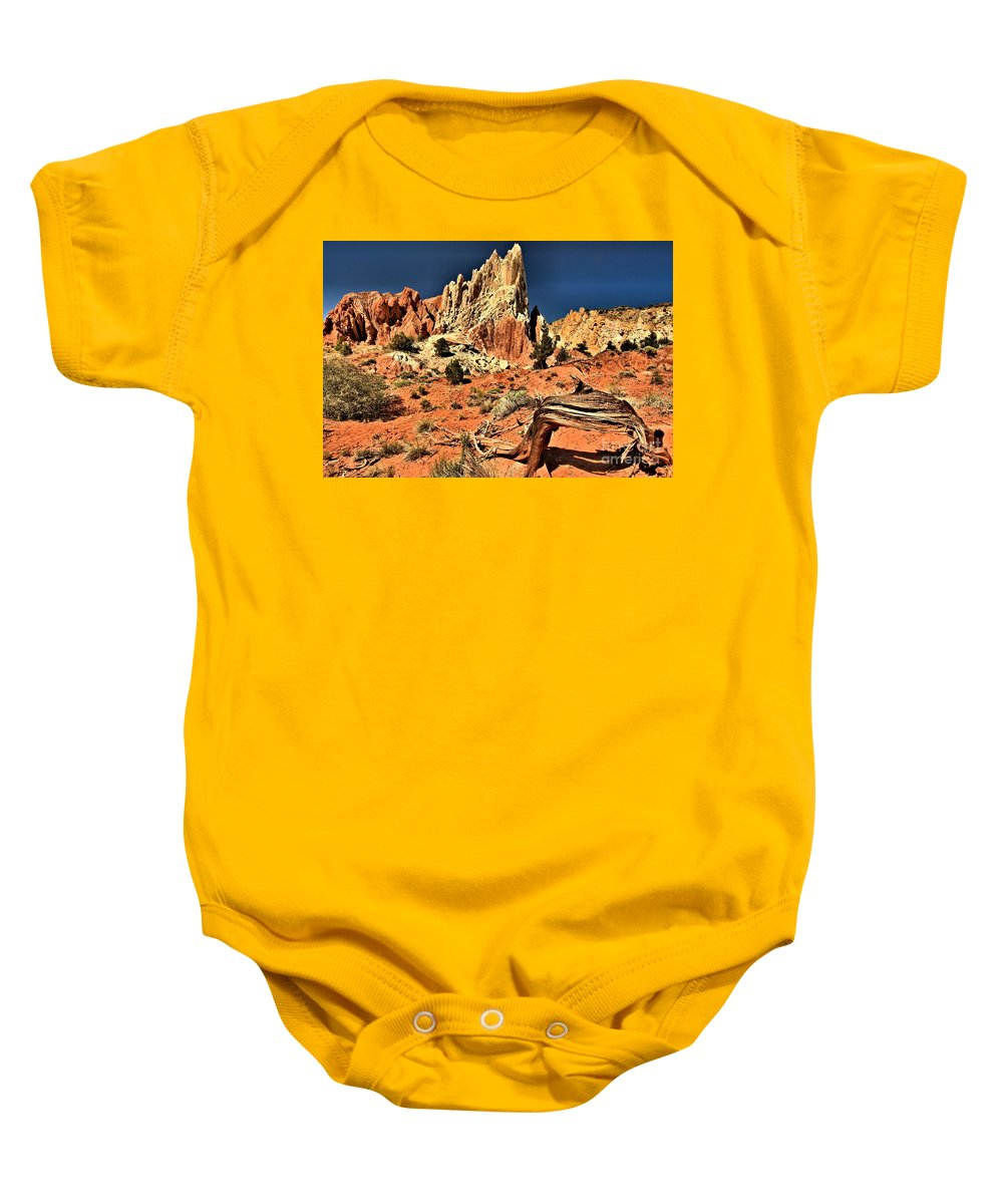Cottonwood Road Baby Onesie featuring the photograph Dead Trees In A Rainbow Desert by Adam Jewell