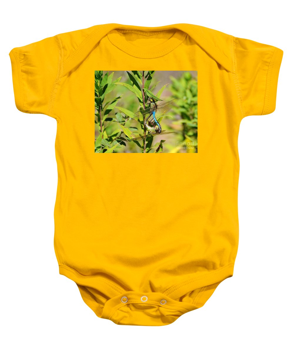 Dragonfly Baby Onesie featuring the photograph Double Dragon by Al Powell Photography USA