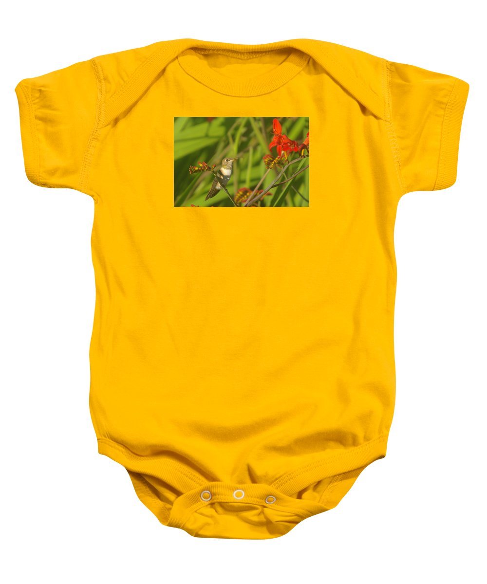 Hummingbird Baby Onesie featuring the photograph Dreaming In The Nectar by Jeff Swan