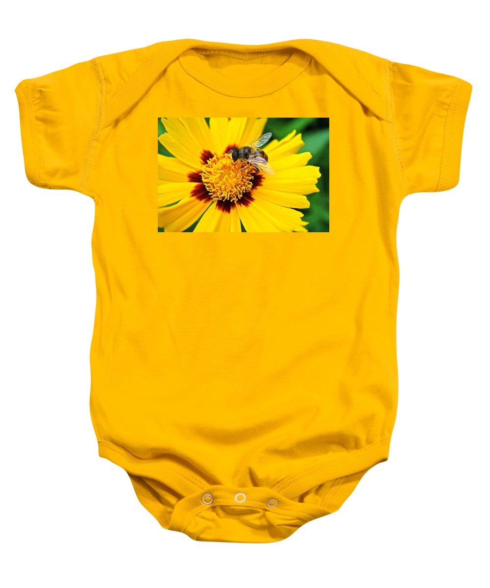 Queen Baby Onesie featuring the photograph Drone Bee by Frozen in Time Fine Art Photography