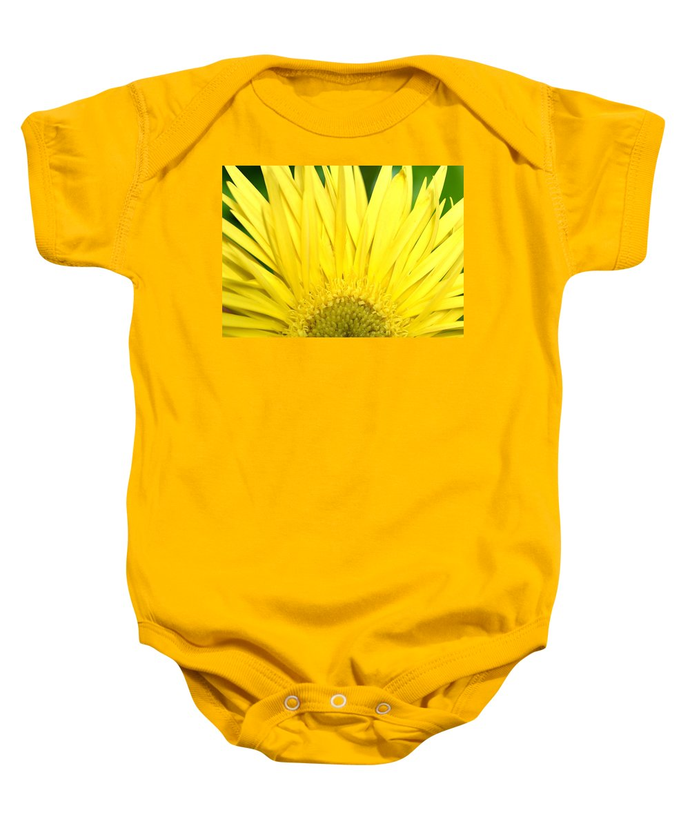 Gerber Baby Onesie featuring the photograph Dsc301d-002 by Kimberlie Gerner