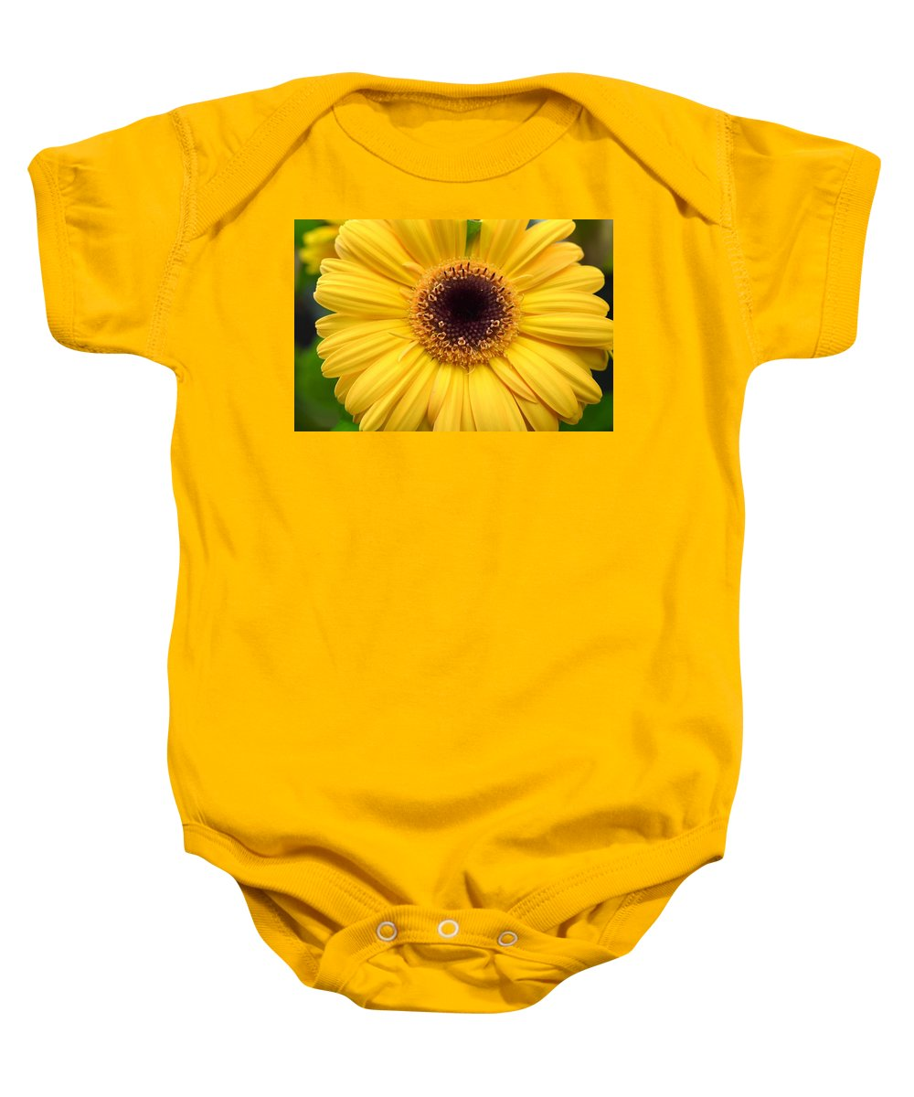 Gerber Baby Onesie featuring the photograph Dsc332d1 by Kimberlie Gerner