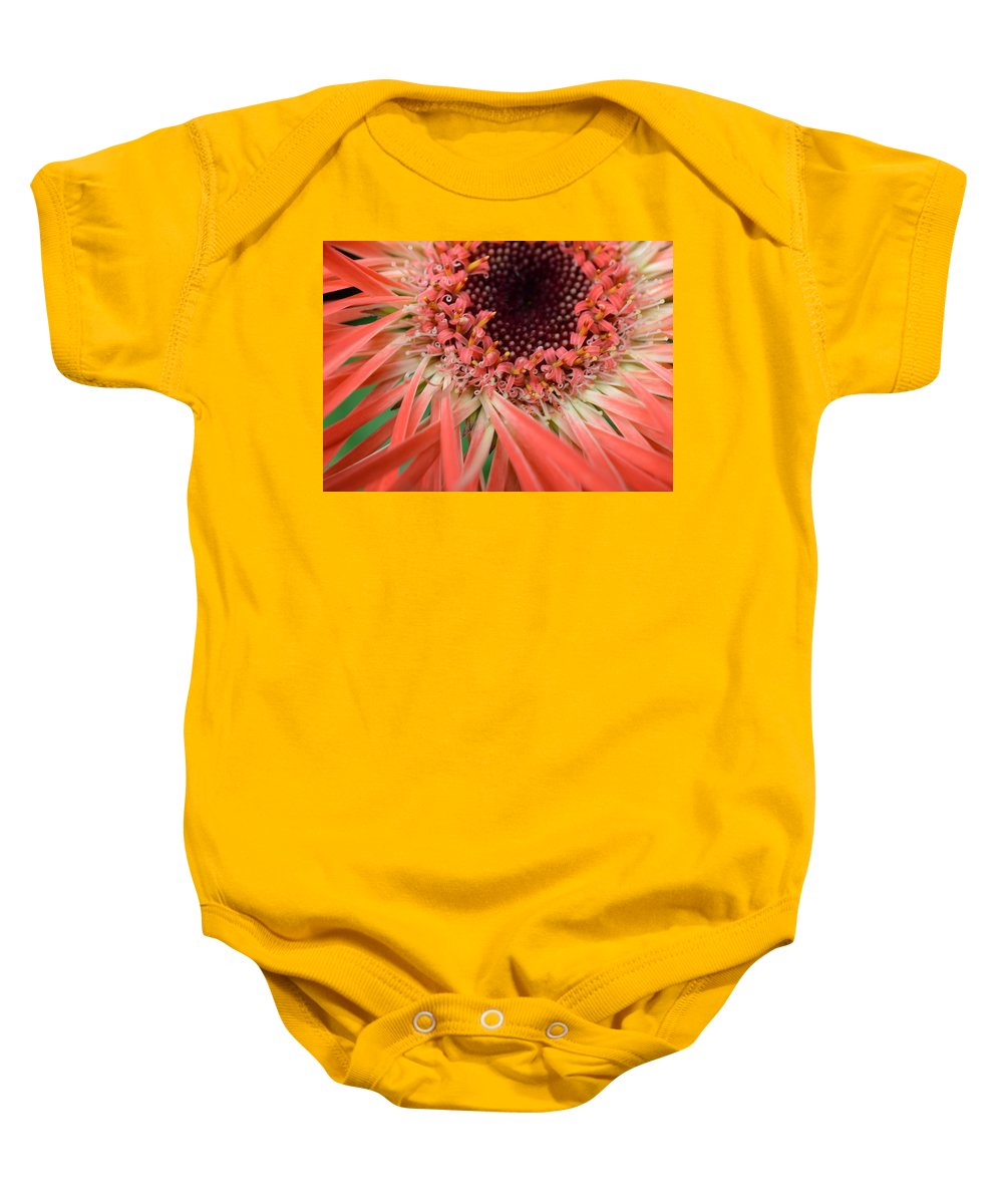 Gerber Baby Onesie featuring the photograph Dsc916d-002 by Kimberlie Gerner