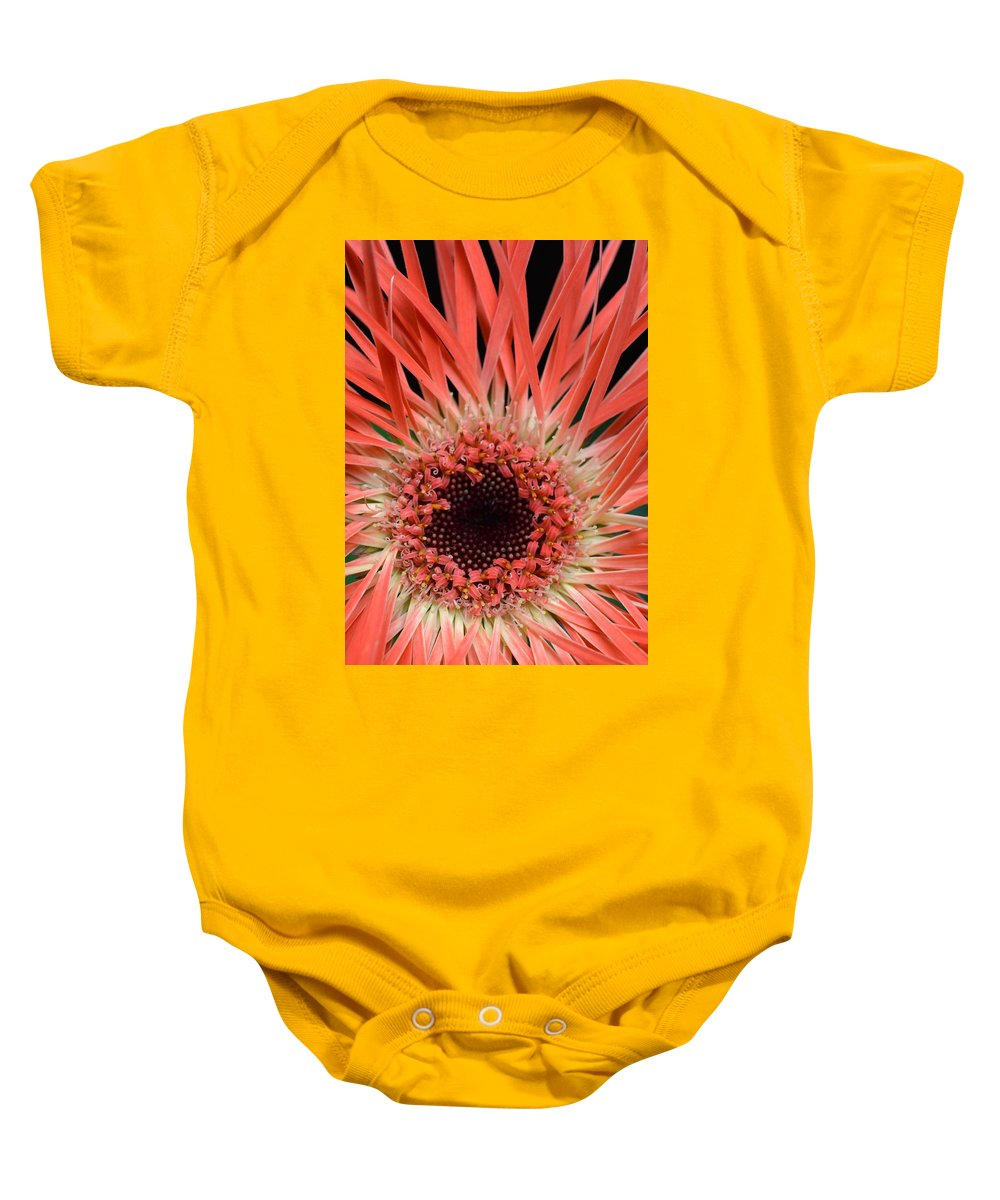 Gerber Baby Onesie featuring the photograph Dsc917d2 by Kimberlie Gerner