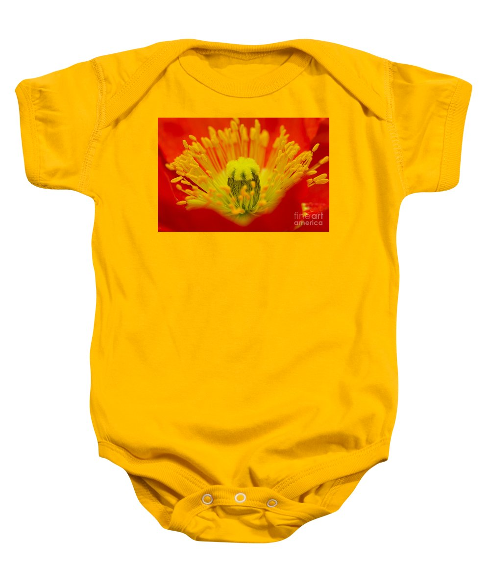 Red Baby Onesie featuring the photograph Explosion Of Colour by Carole Lloyd