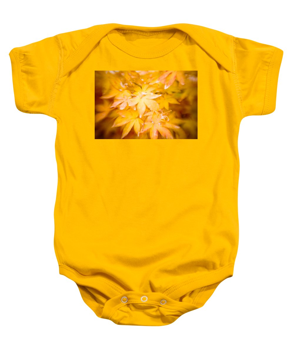 Color Baby Onesie featuring the photograph Fall Colors 6664 by Timothy Bischoff
