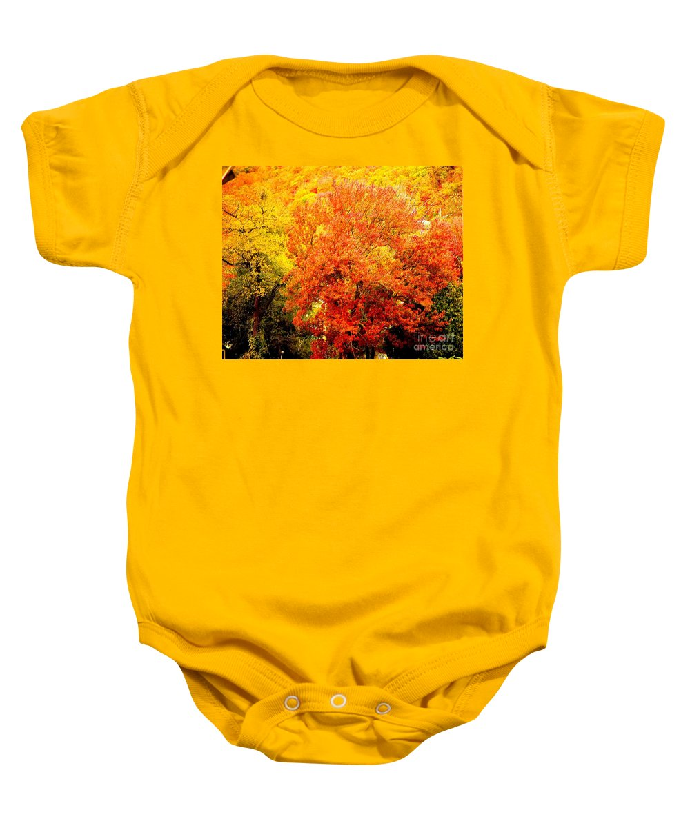Fine Art Photography Baby Onesie featuring the photograph Fall In Full Bloom by Nicholas Costanzo