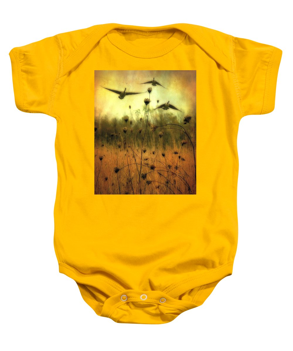 Geese Baby Onesie featuring the photograph Field Dwellers by Gothicrow Images