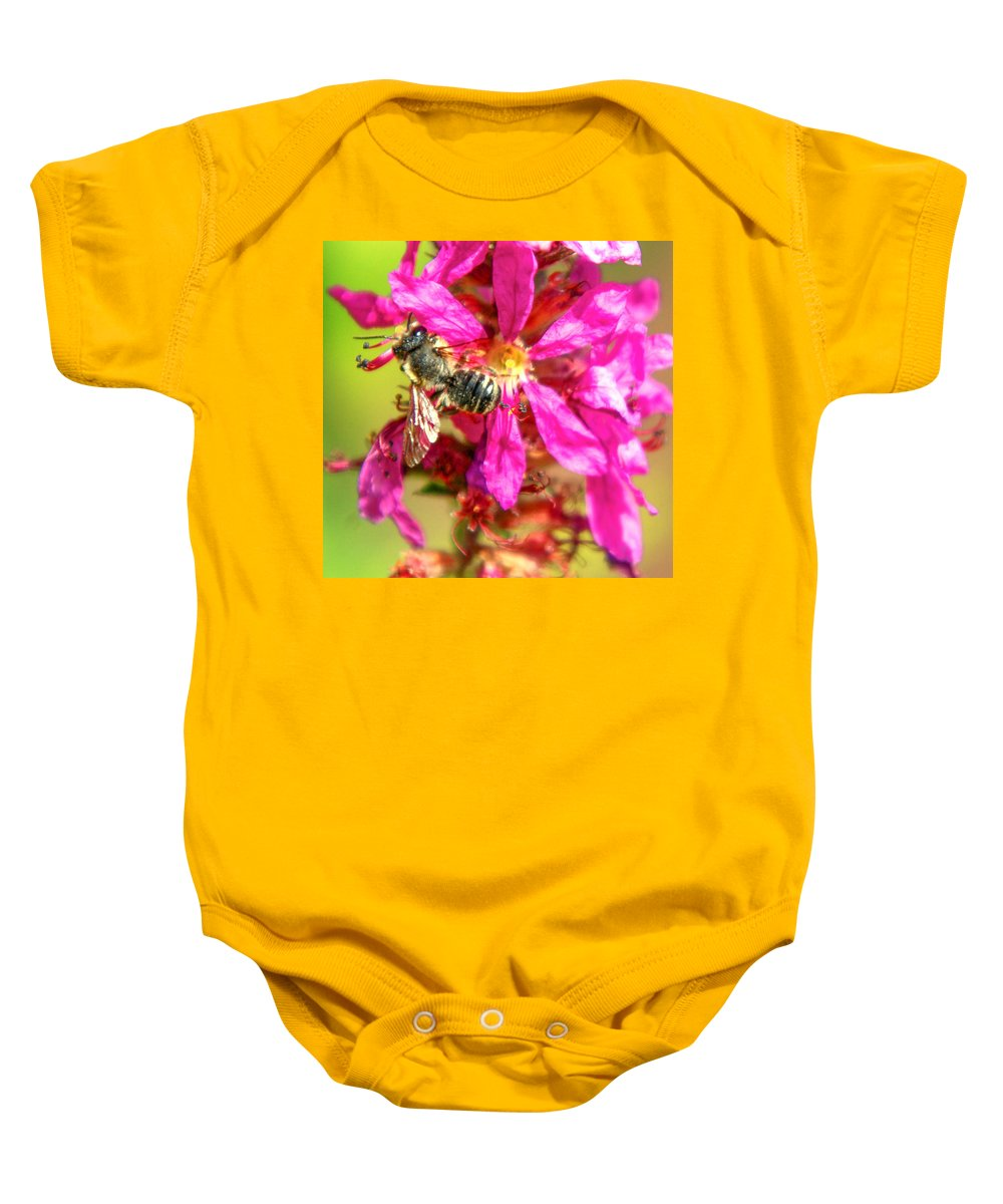 Purple Wild Flower Baby Onesie featuring the photograph Foraging by Optical Playground By MP Ray