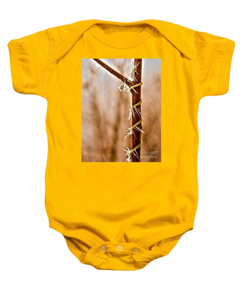 Background Baby Onesie featuring the photograph Frozen Spiral Vine by Andrea Goodrich