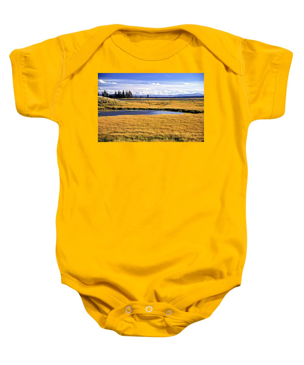 Landscape Baby Onesie featuring the photograph Geese At Yellowstone Lake by Sharon M Connolly