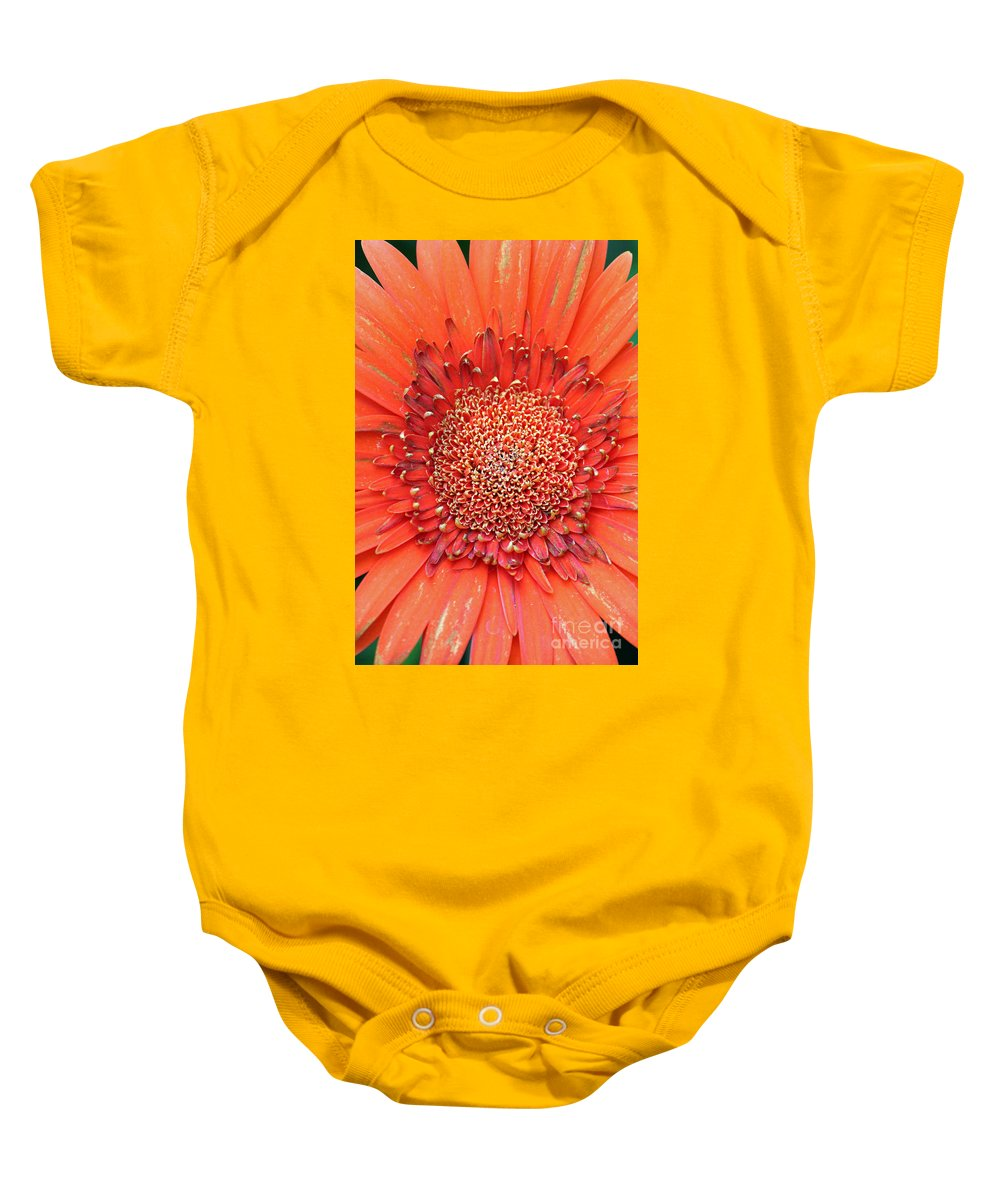 Flower Baby Onesie featuring the photograph Gerber Baby by Jamie Smith
