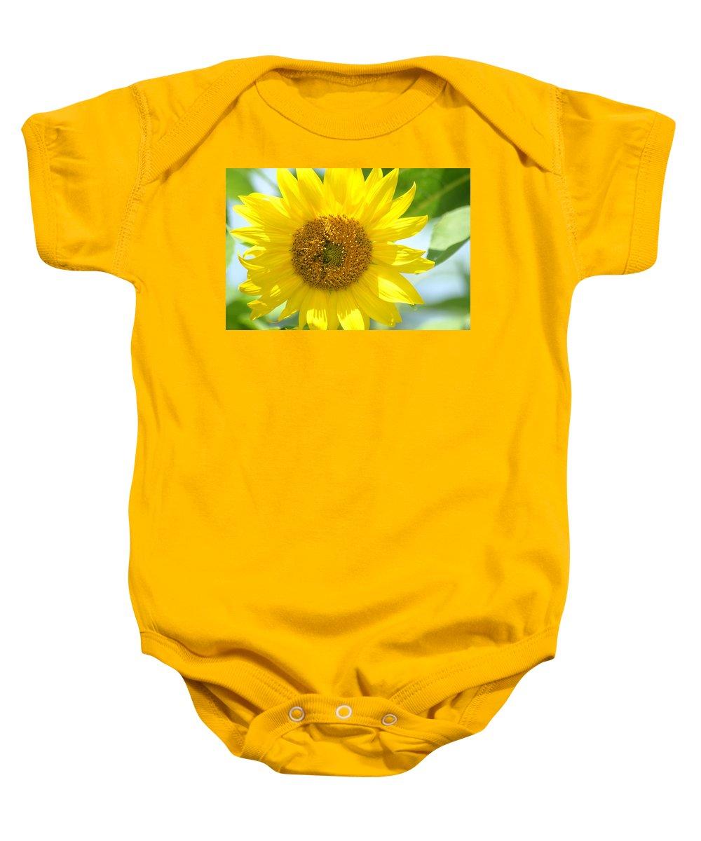 Golden Sunflower- 2013 Baby Onesie featuring the photograph Golden Sunflower - 2013 by Maria Urso
