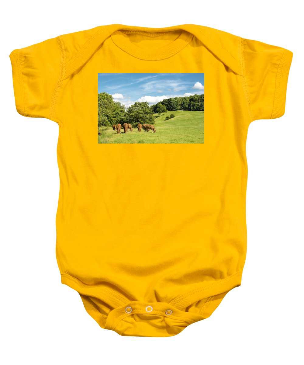 Grazing Baby Onesie featuring the photograph Grazing Summer Cows by Amanda Elwell