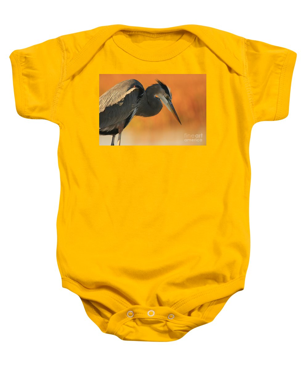 Animals Baby Onesie featuring the photograph Great Blue Heron Focus by John F Tsumas