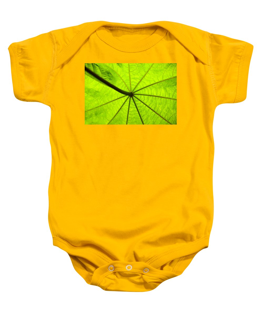Green Baby Onesie featuring the photograph Green Growth by David Lee Thompson