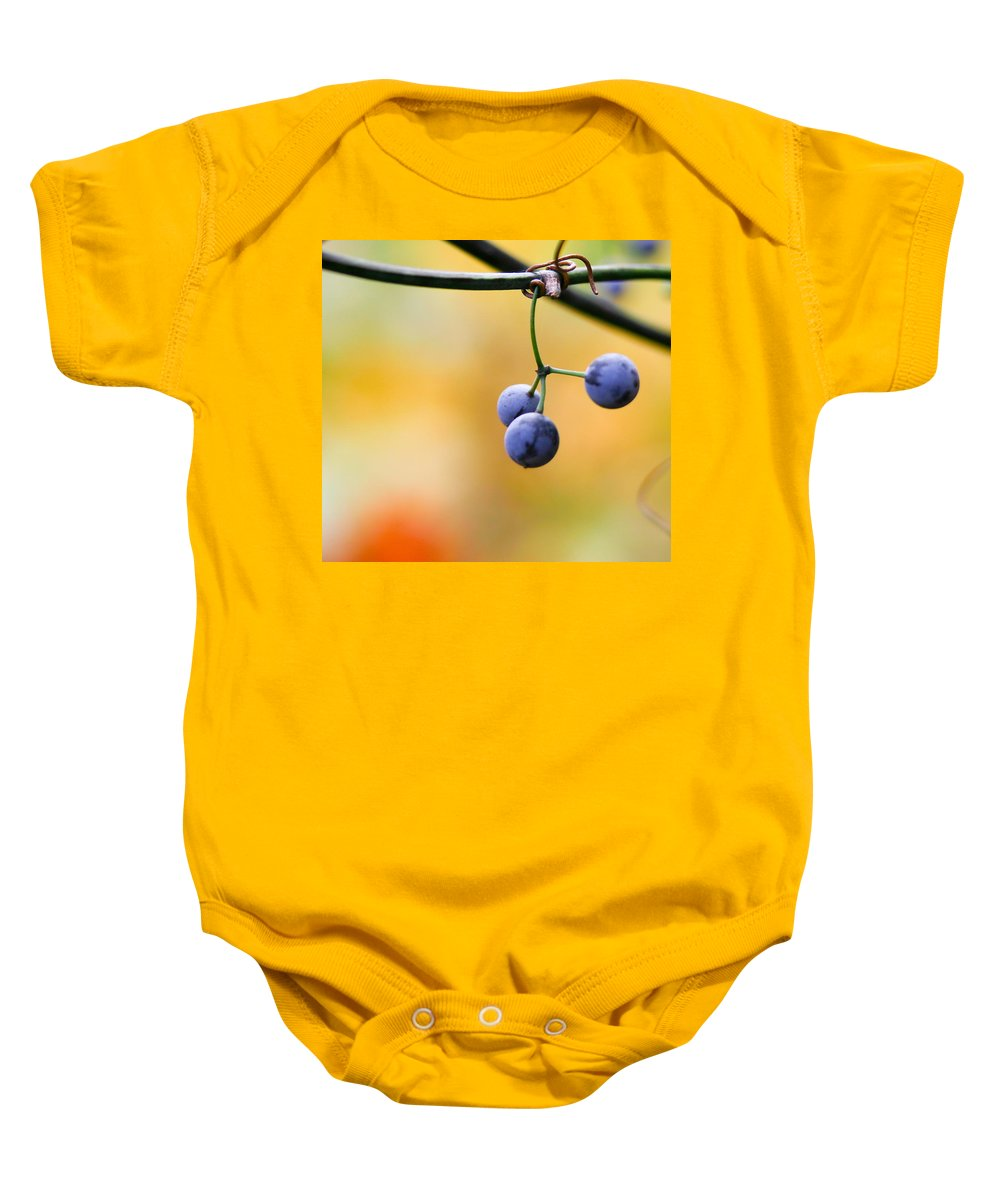 Berries Baby Onesie featuring the photograph Hanging Berries by Shane Holsclaw