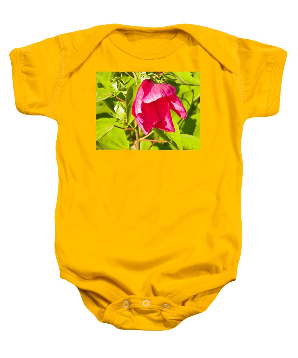 Hibiscus Baby Onesie featuring the photograph Hibiscus Flower by Nick Kirby