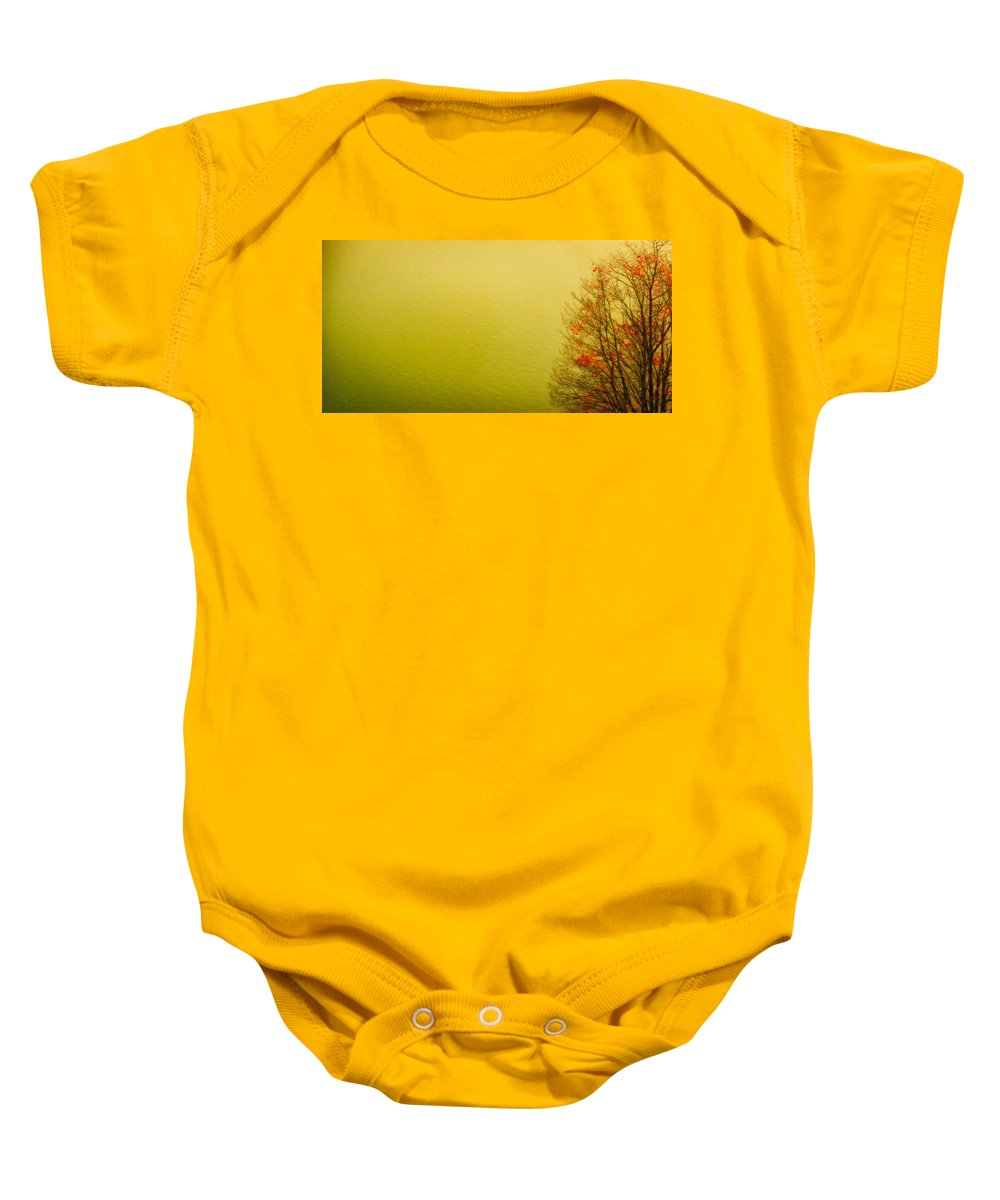 Autum Tree At The Lake Baby Onesie featuring the photograph Lake View With Red Autumn Foliage by Peter v Quenter