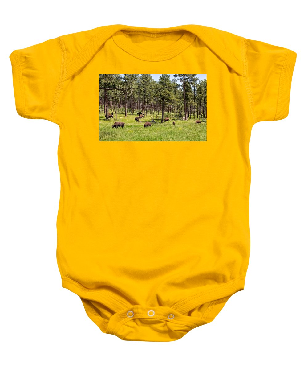 Landscape Baby Onesie featuring the photograph Lazily Grazing Bison by John M Bailey