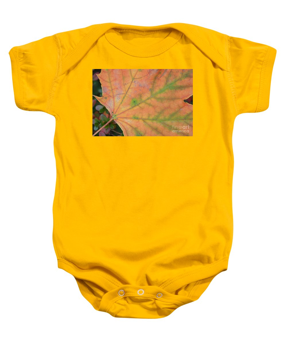 Leaf Baby Onesie featuring the photograph Leaf Me Alone by Charlotte Stevenson