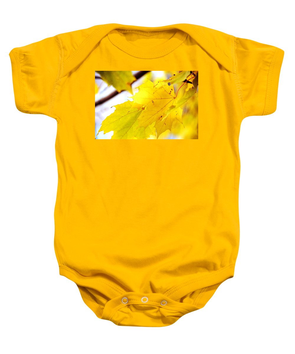 Eaves Baby Onesie featuring the photograph Maple Leaves At Autumn Glory 1 by Jenny Rainbow