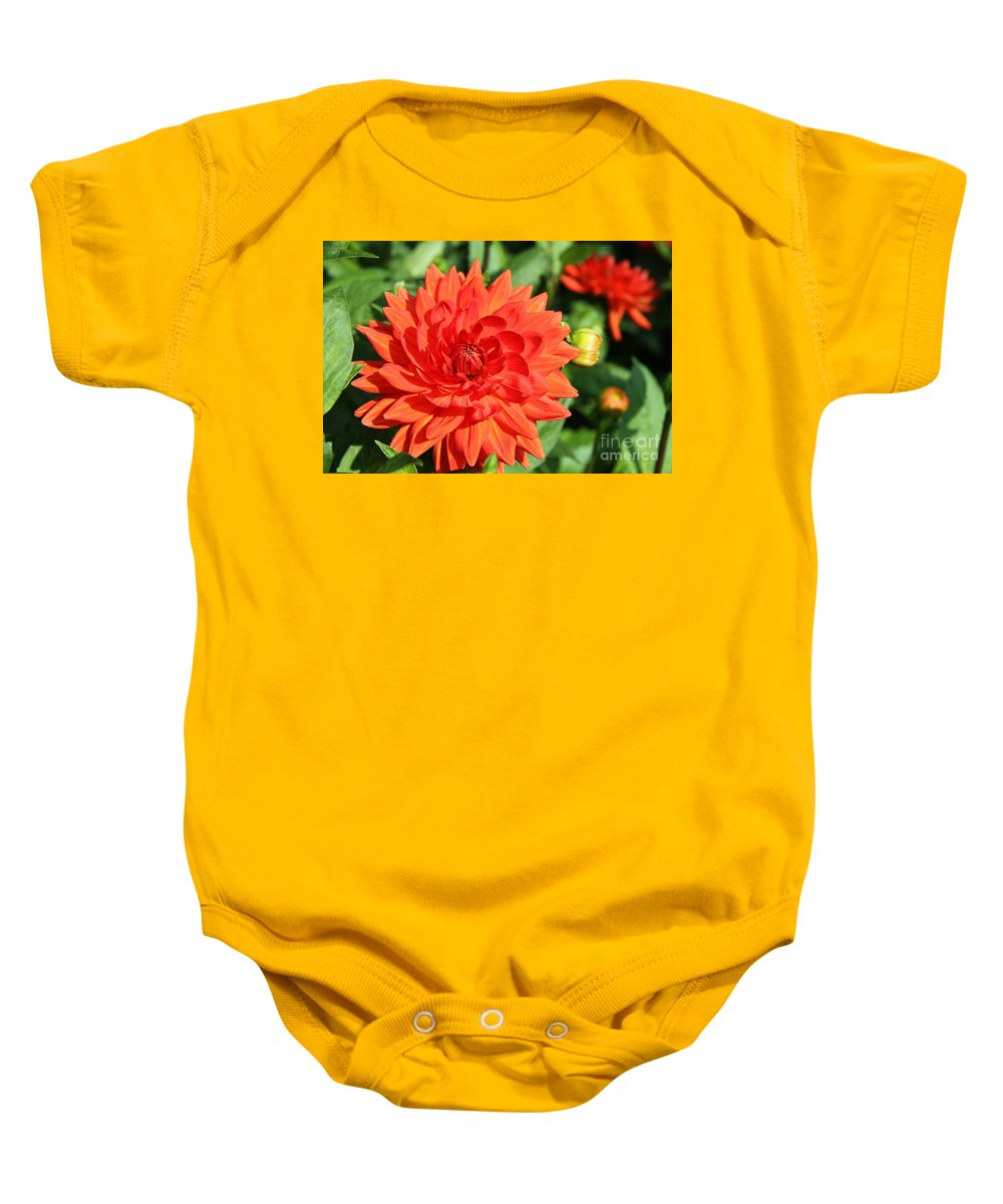 Dahlia Baby Onesie featuring the photograph Memories Of Summer by Christiane Schulze Art And Photography