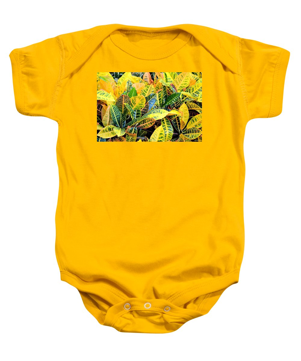 Multi-colored Baby Onesie featuring the photograph Multi-colored Croton by Maria Urso